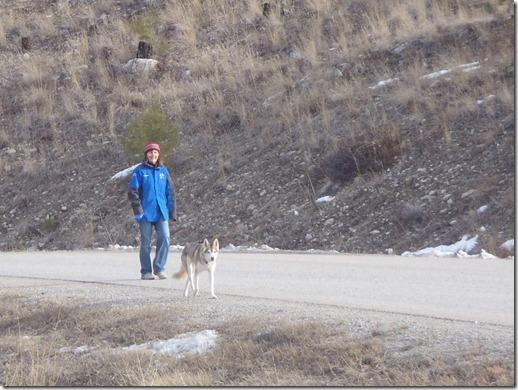 RBuchanan photo Neighbour Claire Festel and dog Yukon