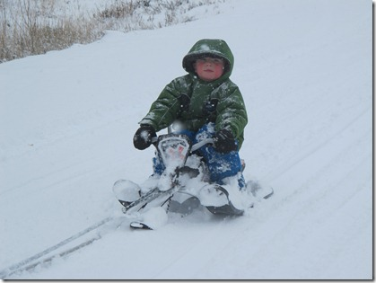 RBuchanan photo Neighbour Jordan gets a sleigh ride