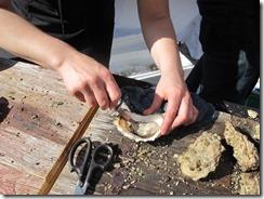 RBuchanan oysters Miradoro IMG_5160