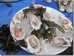 RBuchanan oysters Watermark  IMG_5103