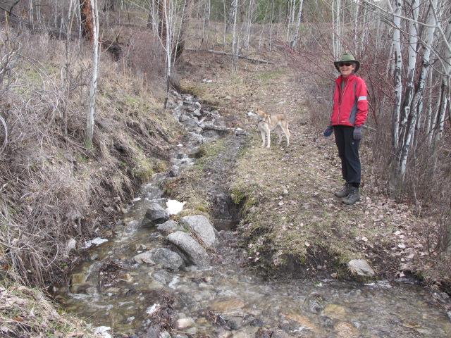 RBuchanan photo: Claire Festel and Yukon on one of our neighbourhood walks.